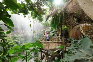 Cabañas en la selva, alojamiento divertido para niños en Limburgo, Países Bajos