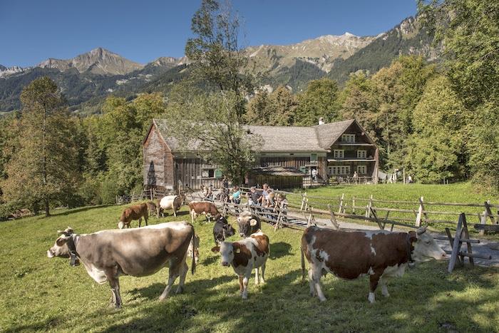museo al aire libre de Ballenberg en Suiza