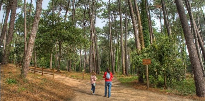Parque Forestal Isla de la Toja con niños