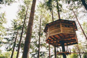 Cabañas en los árboles, otra forma de alojamiento familiar en Cataluña