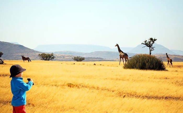 Safari con niños en Kenia, descubre África en familia