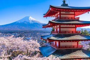 Qué hacer en Japón con niños