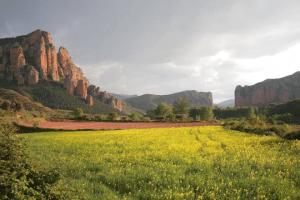 Rutas y excursiones con niños en La Rioja