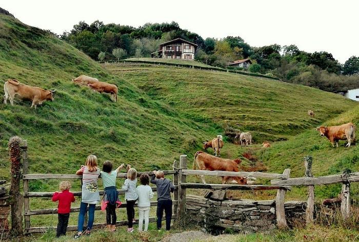 Excursiones y rutas con niños en Navarra